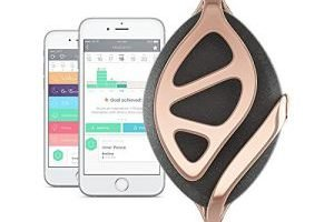 Bellabeat Leaf Urban Health Tracker